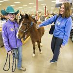 Newly remodeled livestock supply store is more than horse feed