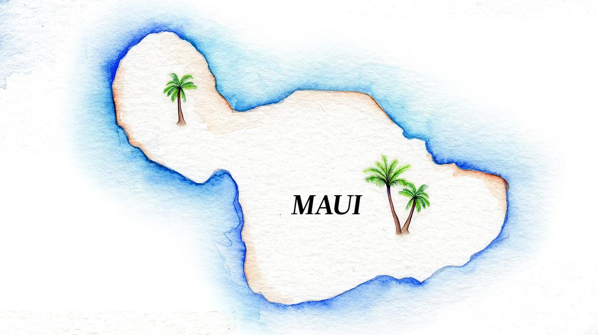 Two Maui restaurants allowed to reopen following pest infestations - Pacific Business News