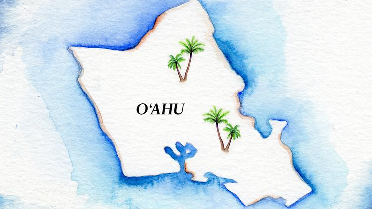 Hawaii Public Housing Authority Plans 800 Senior Rentals In 370m