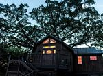 Super Bowl bound? A Denver company can put you up in a tree house