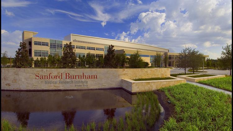 UCF, Florida Hospital, Orlando Health may vie for Lake