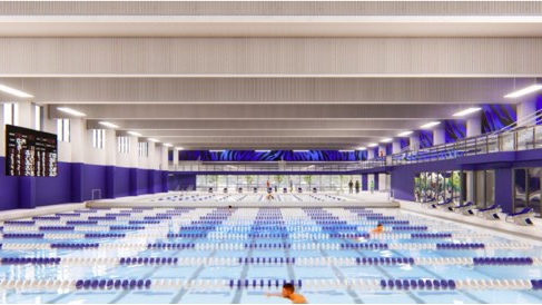 University of Memphis launches campaign to expand swimming ...