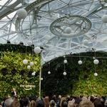Seattle firm that designed the Spheres is named world's most innovative architecture company