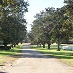Software executive, wife buy 4,657-acre Albany, Ga., plantation (Photos)