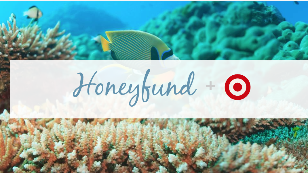 target teams with honeyfund honeymoon crowdfunding website in clearwater minneapolis st. Black Bedroom Furniture Sets. Home Design Ideas