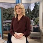 Supporters spring to Megyn Kelly's defense