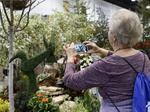 Picture This: Spring flowers early at the Colorado Garden & Home Show (Photos)
