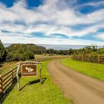 Home of the Day: Historic Maui Ranch