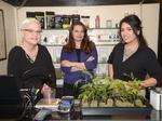 Cannabis entrepreneur plans manufacturing accelerator in Sacramento
