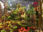 Scenes from the Philadelphia Flower Show