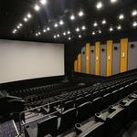 SNEAK PEEK: Inside Indian Land's new 14-screen luxury cinema (PHOTOS)