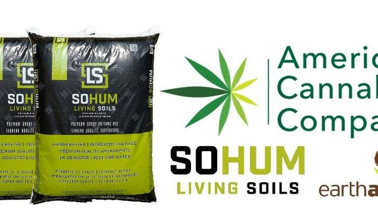 Home Depot now selling American Cannabis Company products