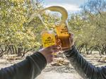 The new brew crew: Behind the heady rise of craft beer in Central Texas