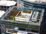 How the Denver Green Roof Initiative impacts construction