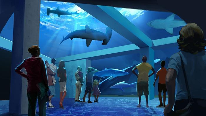Sharks to highlight Georgia Aquarium's $100 million expansion (Renderings)