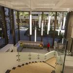 Architecture firm G70 shows off its talents in new Honolulu office: Slideshow