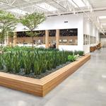 Cool Offices: Room & Board's revamped HQ takes 'green' design to a new level