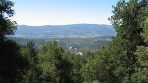 Home of the Day is within your imagination ~ Build it in the Napa Valley!