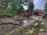 CBJ Morning Buzz: Powerful storms leave damage across region; Wells Fargo exec confirms cuts; Mooresville brewery nears opening