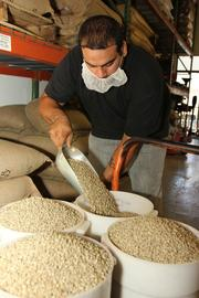 Juan Alarco, roaster, preparing beans to be roasted.