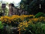 Gardens tourism blooming throughout Atlanta