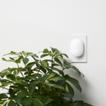 Alphabet reluctantly tells investors how much money it's losing on Nest