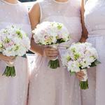Rental site shutdown leaves bridesmaids scrambling