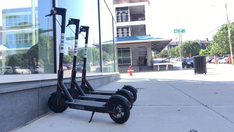 Bird Electric Scooter Service Arrives In Denver Denver Business