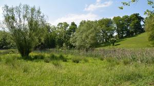 River Ridge donates 105 acres for new recreational development