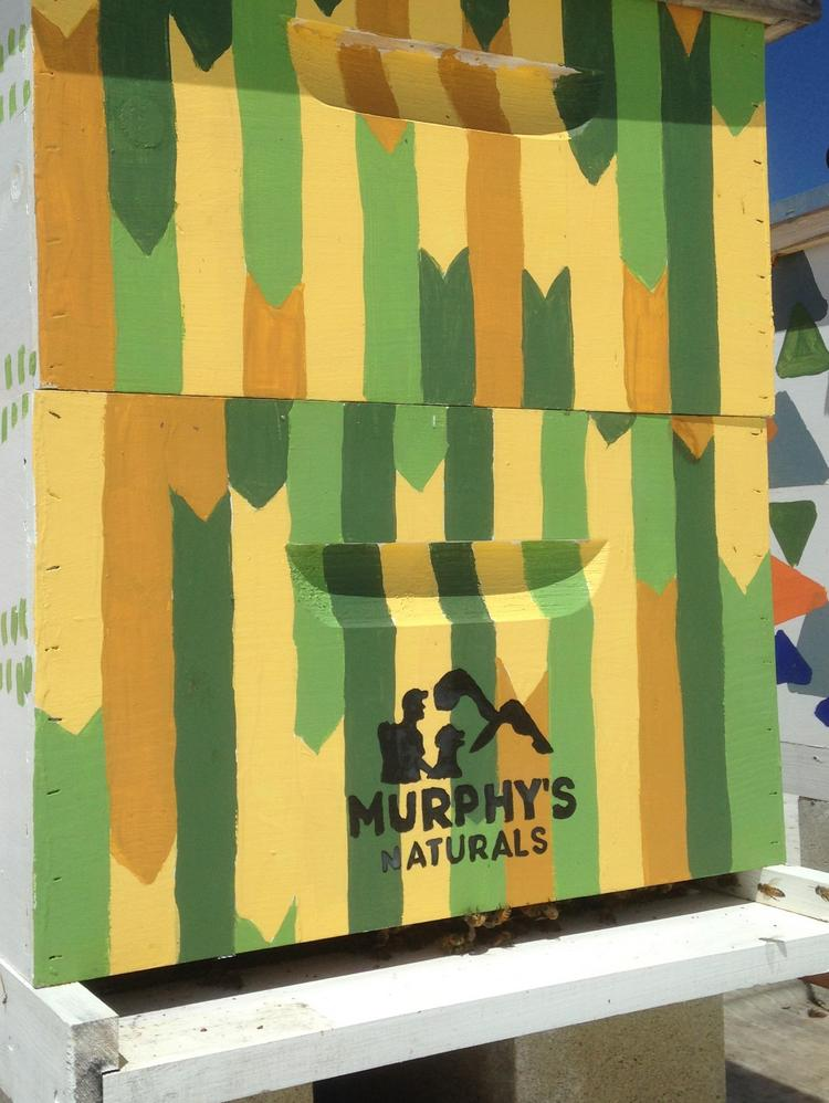 Murphy's Naturals hive at the company's Raleigh headquarters
