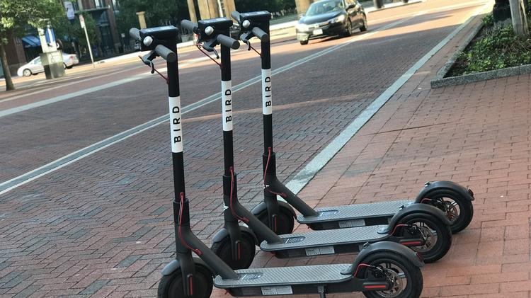 Tampa tosses out bids for e-scooter pilot program - Tampa