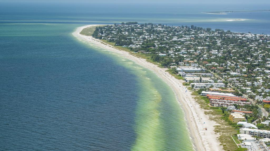 Fishing Restriction Extended In Tampa Bay Amid Red Tide Woes Tampa
