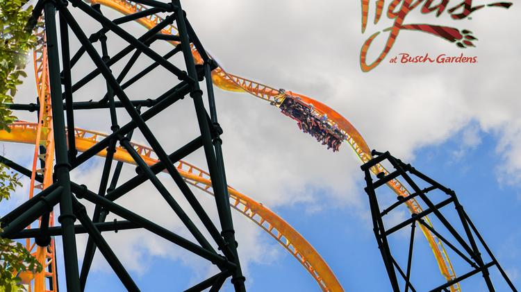 What To Know About Busch Gardens Tampa Bay S New Tigris Ride And