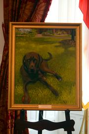 A painting of Mo McCrory, North Carolina's First Dog.