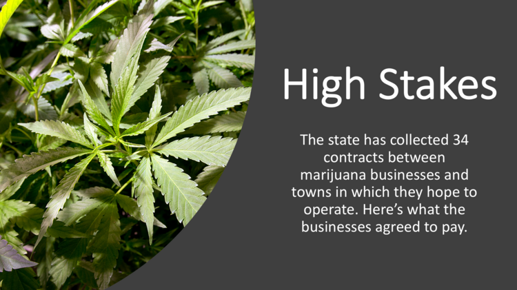 Here's how much in fees marijuana and cannabis companies are