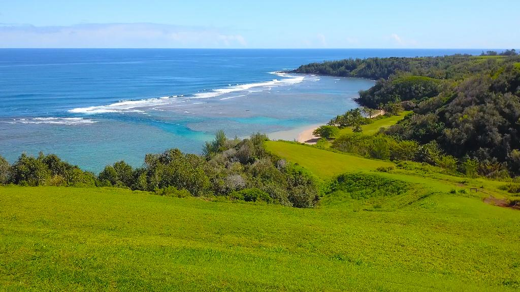 Kuleana lands on Zuckerberg's Kauai estate sold at auction