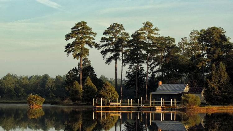 Check out 2,294-acre hunting plantation in Lee County, Ga