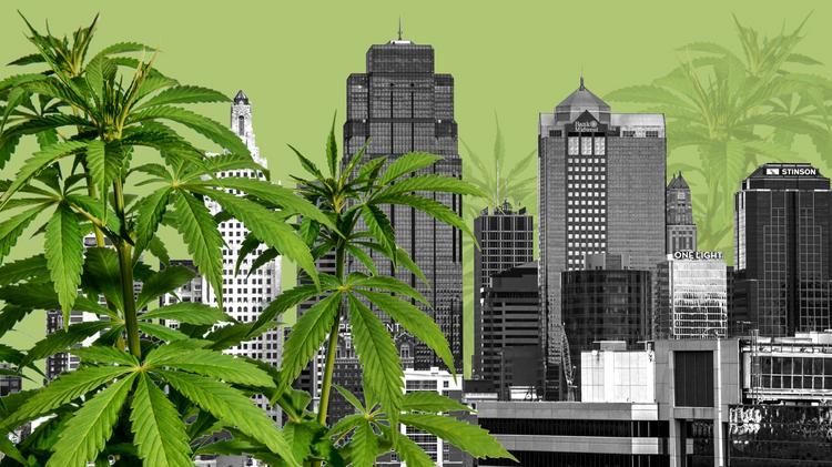 Missouri will issue 338 medical marijuana licenses - Kansas
