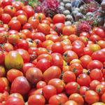 Winters seeks input on building economic engine, food hub in Yolo County