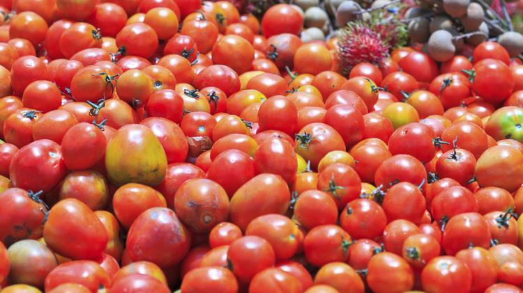 Salad days in doubt as US-Mexico friction hits imports