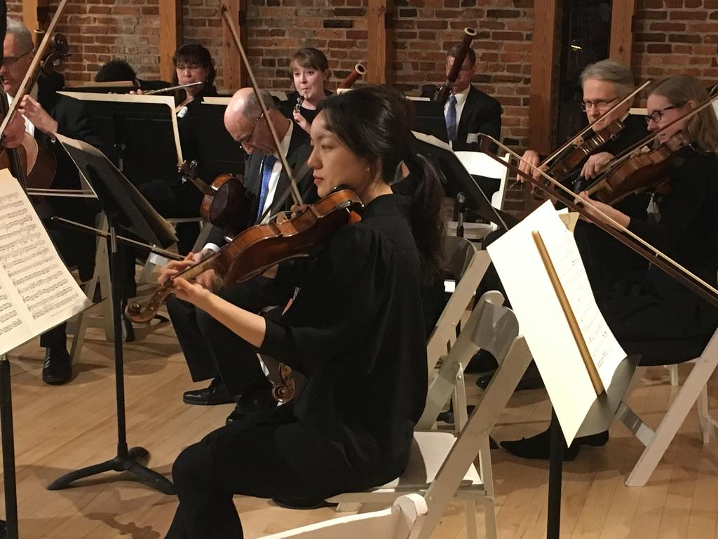 Baltimore Symphony Orchestra Company Profile - The Business