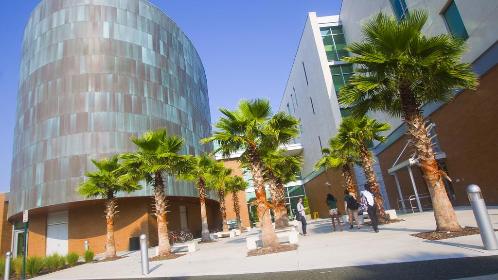 USF ranks among universities with the best MBA programs