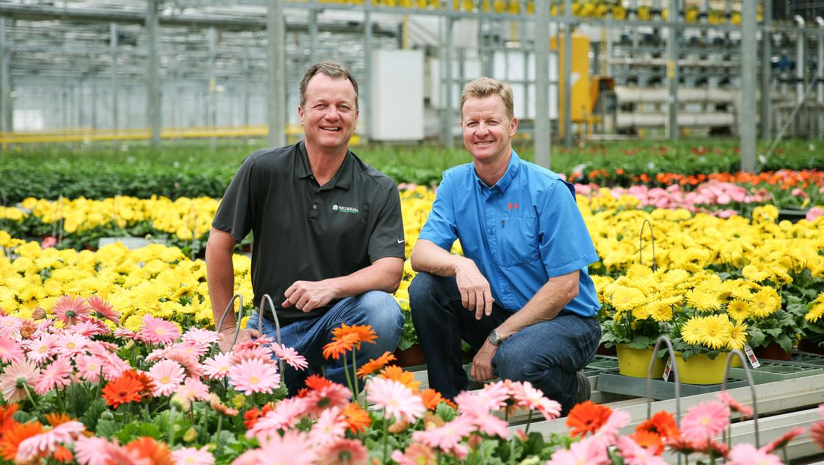 Brothers Grow Metrolina Greenhouses