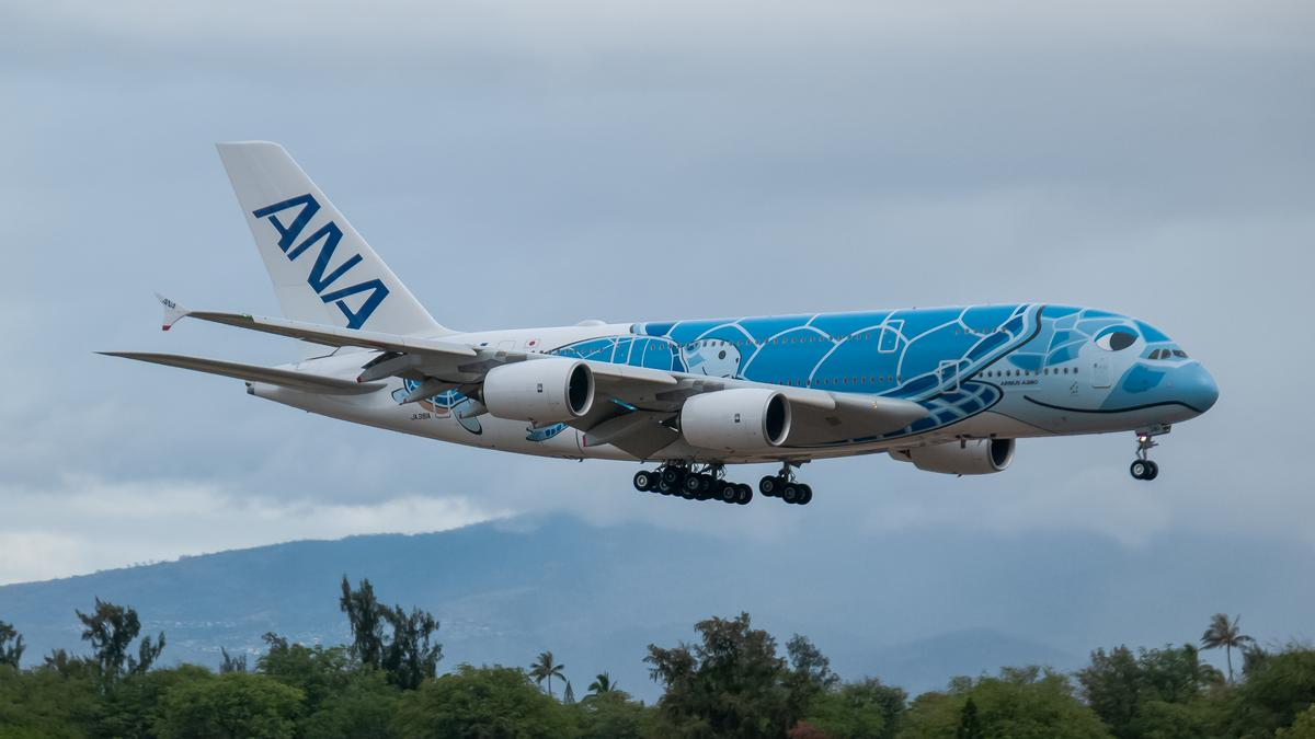 Nippon Airways A380 Flying Honu