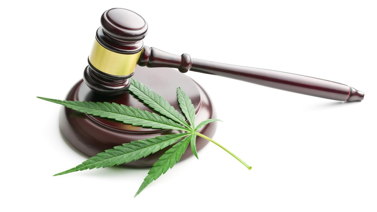 Hemp Events 2020 Albuquerque.Recreational Marijuana Use In New Mexico Could Pass In 2020
