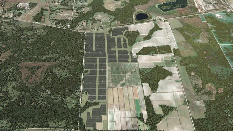 FPL starts construction on Manatee County solar power plant