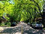 Covington neighborhood named among nation's 10 best