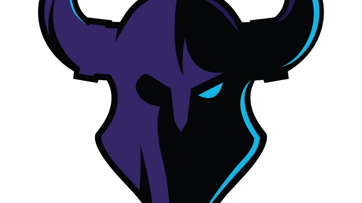 Minneapolis Armory Will Host Debut Of Minnesota Rokkr Call Of Duty Team From Vikings Owners Minneapolis St Paul Business Journal