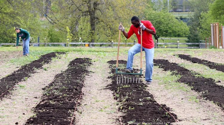 Learning gardens at PCC's campuses and centers emphasize hands-on sustainability education and help address food insecurity among students.