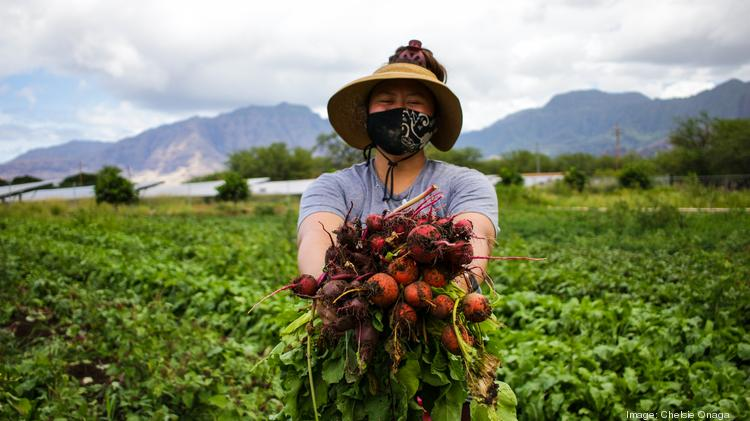 Mao Organic Farms In Waianae Receives 11 4m In Investments Pacific Business News